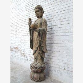 CHINE 1930 grandeur nature statue en bois d'une grande rarete de Bouddha debout