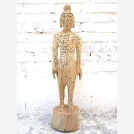 CHINE 1930 la formation médicale des cours de formation maquette en bois du corps masculin du parc de luxe