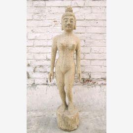 CHINE 1930 l'éducation médicale formation sculpture en bois du corps
